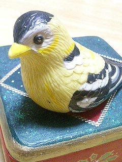 怖い鳥.jpg
